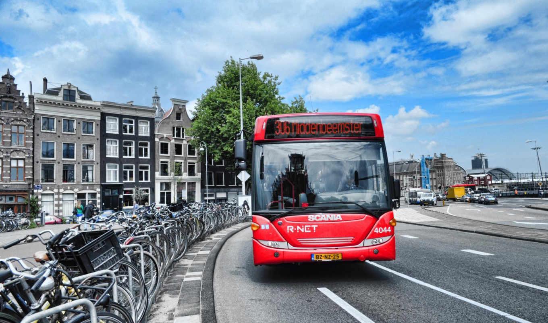 bus, wheels, часть, транспортных, средств,