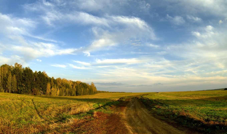 дорога, пейзаж, поле, осень, картинка, картинку,