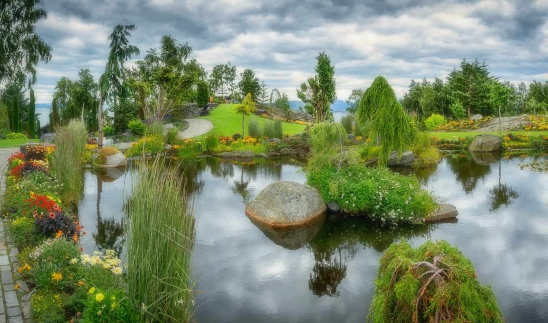 пруд, water, природа, park, shui, cvety, гладь, озеро, design, страница,