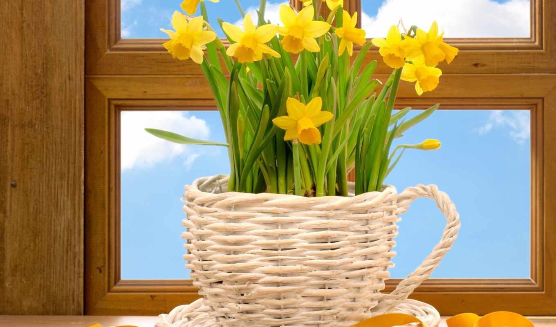 spring, window, издат, photograph,
