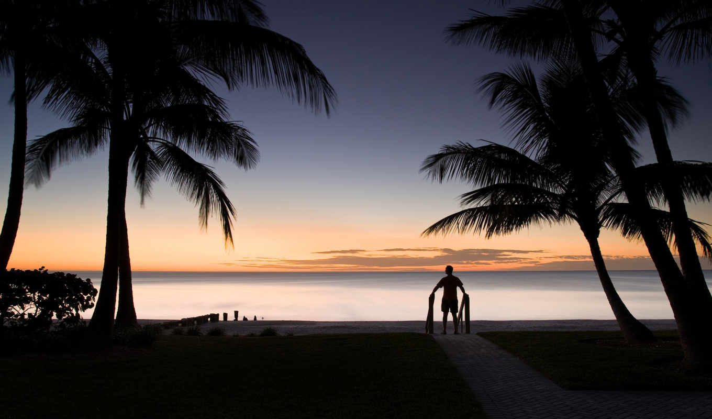 море, мужчина, горизонт, пальмы, landscape, силуэт,