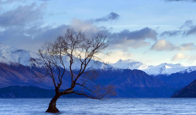 озеро, дерево, пейзаж, картинка, природа, xenea,
