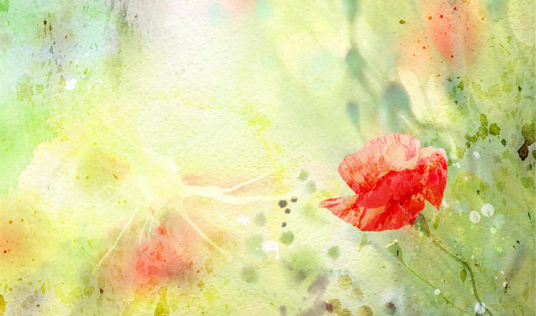 stock, watercolor, фон, цвета, free, photos, images, vectors, royalty, illustration, фото, million, со,