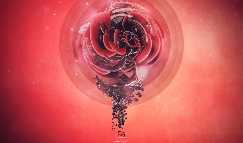 графика, desire, креатив, цветы,