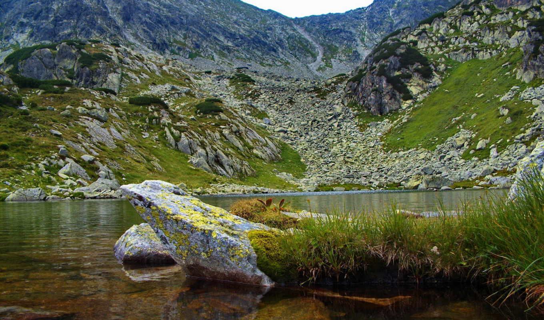 озеро, гора, уровень, desktop, горы, природа, лес,