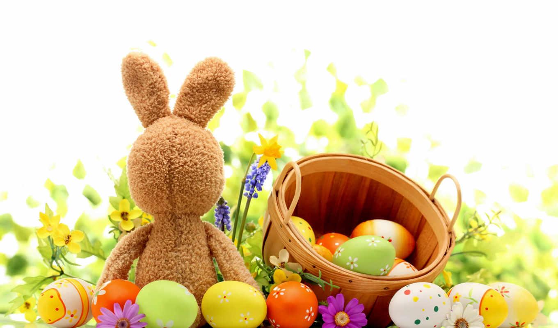 заставки, кролик, яйца, красивые, easter, bunny, пасха, заяц, daily,