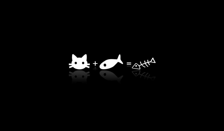 wallpaper, fish, рыба, кости, equation, pic, рыбка, смешные, ve, simbolos, funny, fishbone, kitty, кошка, cat, топ, пользователей, прикольные, unnamed, hello, ویژه, والپیپرهای, موبایل, картинку, кот,
