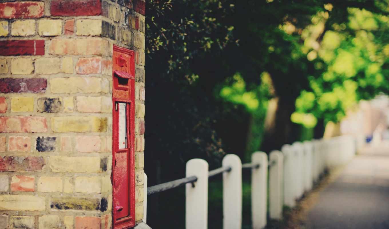 fence, street, city, деревья, макро,