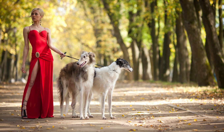 девушка, парк, прогулка, собака, красном, собаки, платье, red, dogs, двумя, борзыми, собаками, картинка,