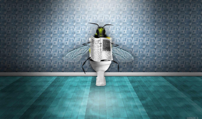 газета, унитаз, news, пчелка,