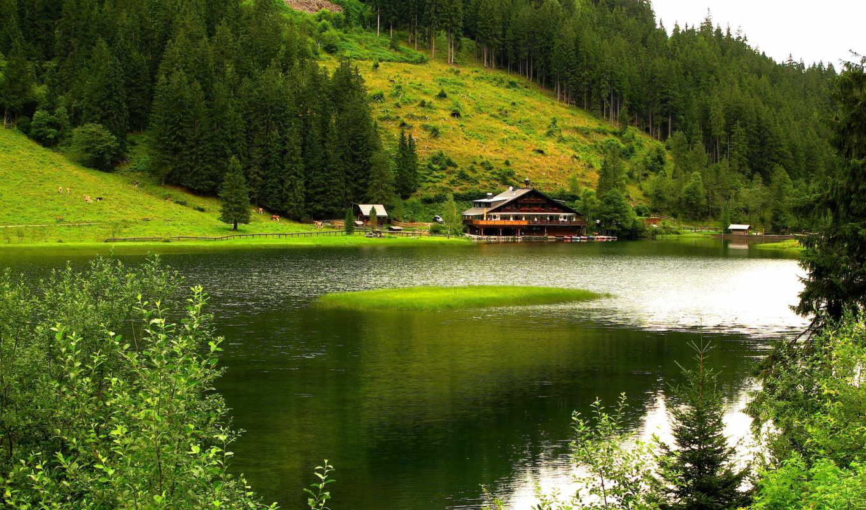 природа, горы, река, деревя,