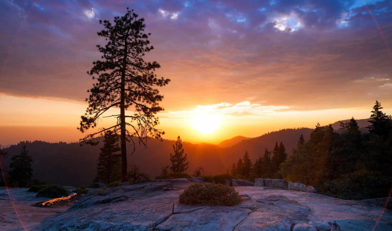 горы, закат, landscape, sun, сосны, pine,