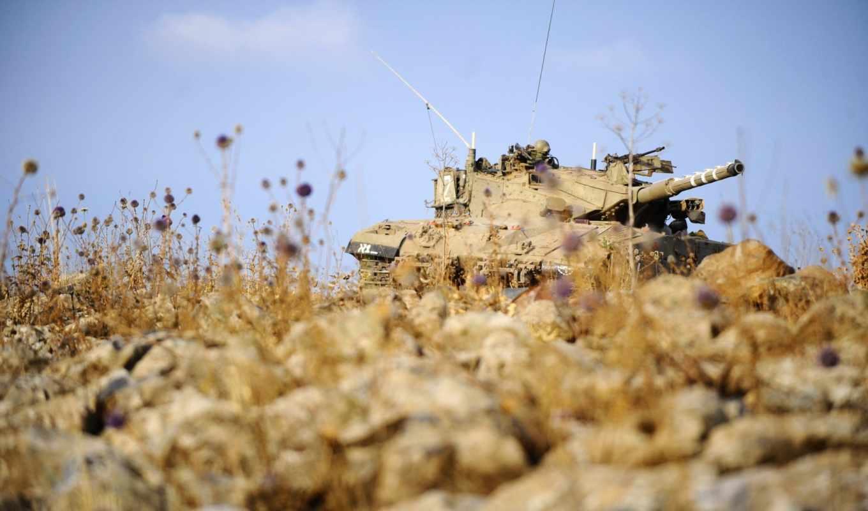 армия, обороны, израиля,