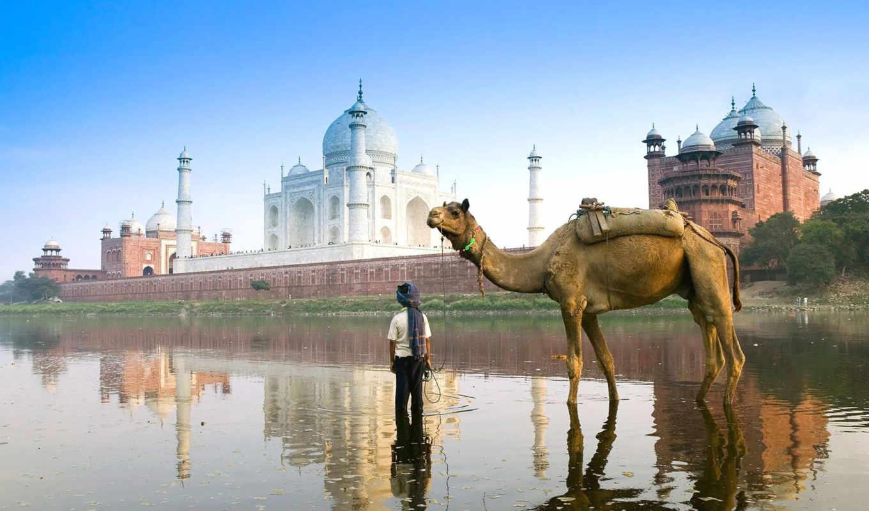 india, amazing, travels, new, hemkund, дели, travel, текст,