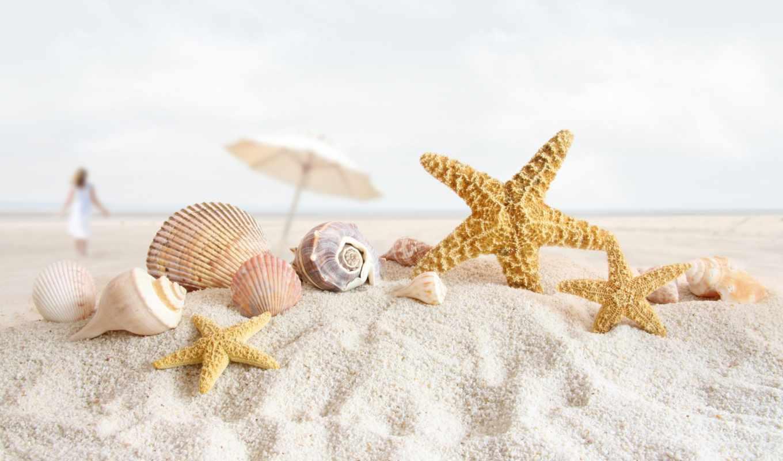 море, песок, морская звезда, ракушки, макро, зонт, девушка