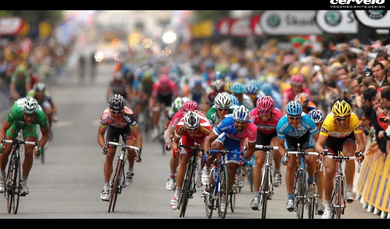 велосипед, гонка, соревнования, победа, номером,
