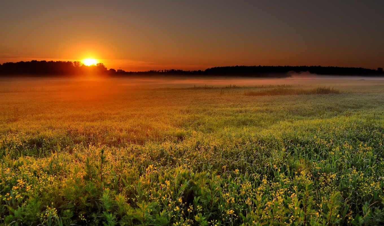 поле, sunrise, туман, солнце, пейзаж, природа, рассвет, iphone, закат,