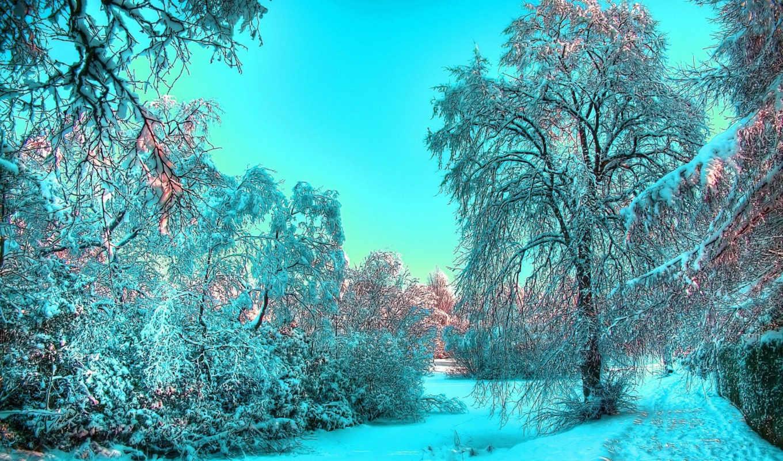 winter, красивые, click, красивых, взгляд,