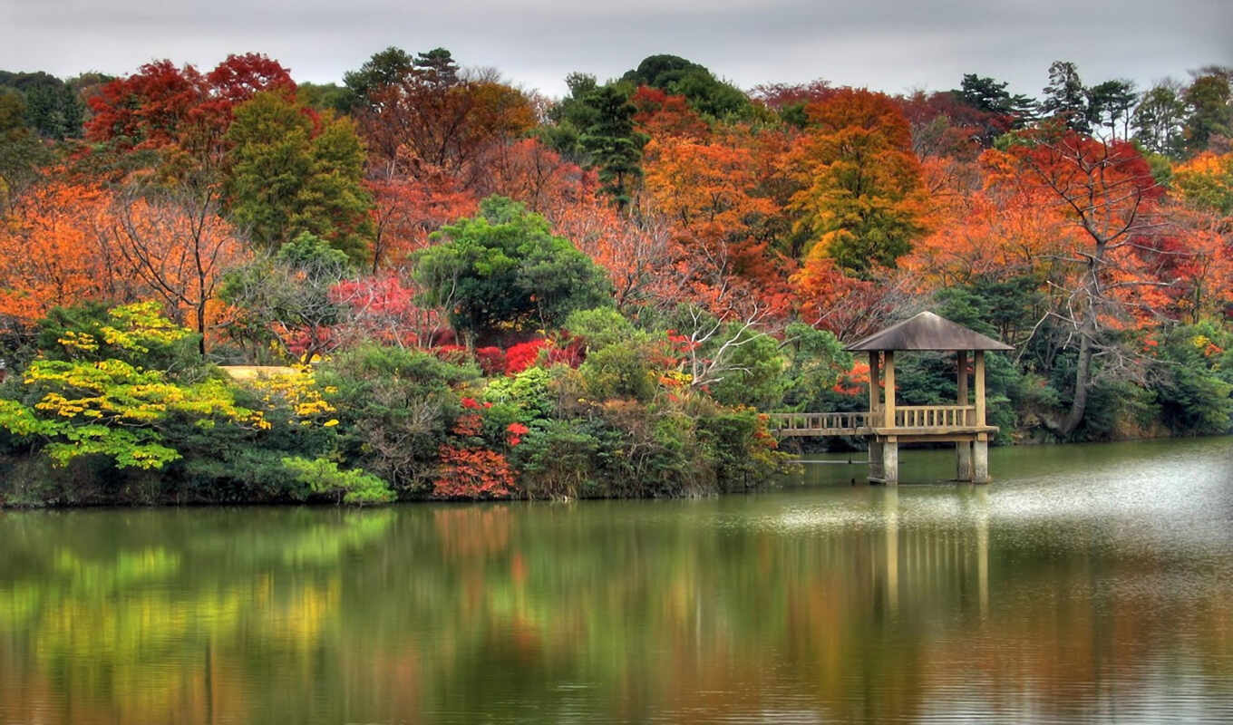 wallpaper, backgrounds, forest, lake, autumn, nature, осень, огненная, hd, ¾êõ²ø, wallpapers, hotels, luxury, india, to, images,