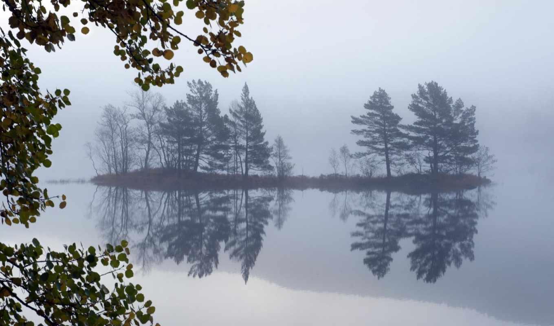 пейзаж, озеро, туман, деревья, картинка,