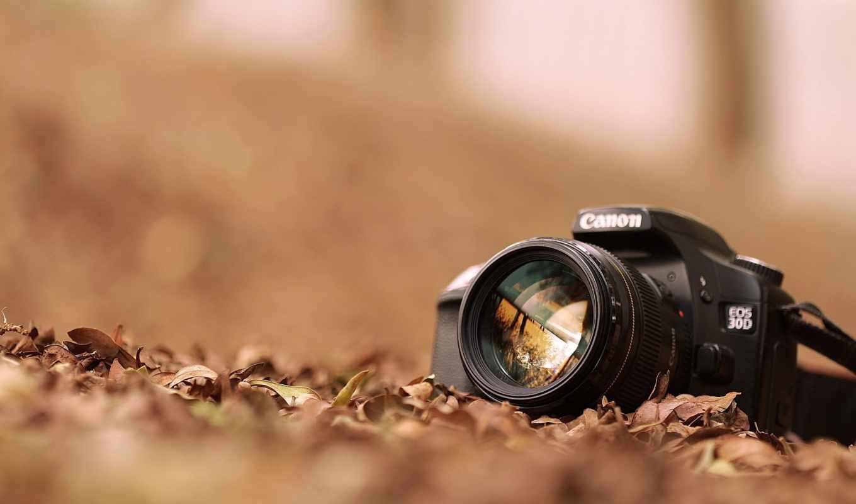 ,, cameras & optics, объектив камеры, объектив, camera accessory, камера, макросъемка, point-and-shoot camera, single-lens reflex camera, закрыть, фотопленка, цифровая зеркальная фотокамера, ,, canon eos, цифровая фотография, канон
