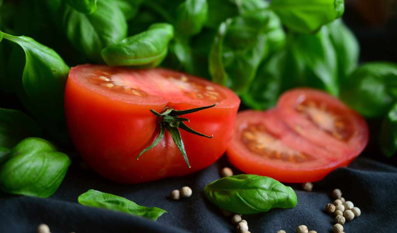 растение, based, диета, you, basil, помидор, вегетарианец, протеин, garden,