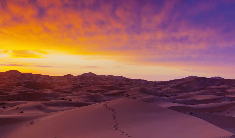 пустыня, сахара, песок, смешные, сахара, comics, приколы,