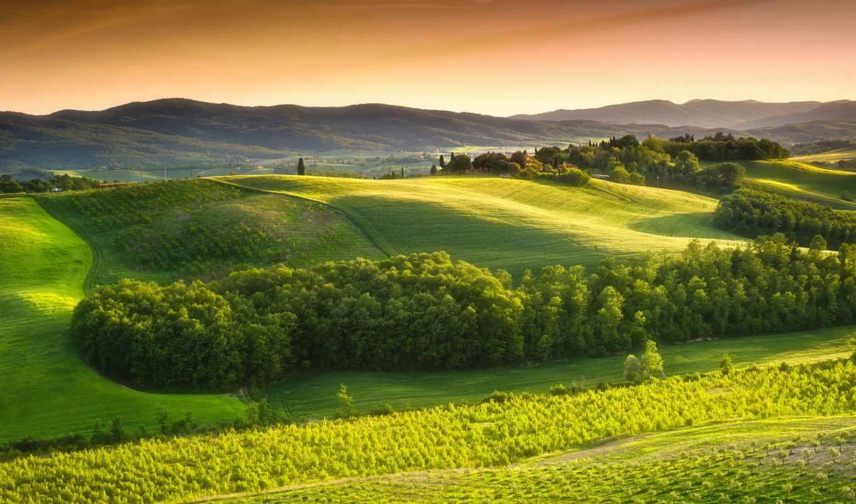 природа, природы, margin, trees, tuscany, пейзажи -, italy, картинка, countryside, небо,