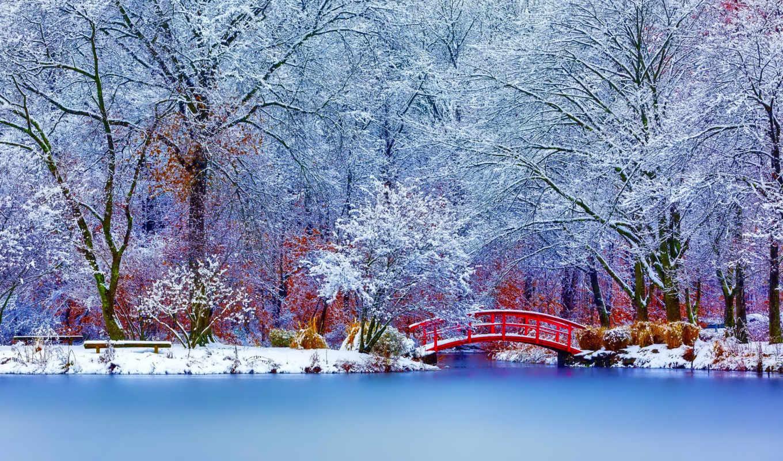мост, red, water, winter, park, природа, snowy, озеро,