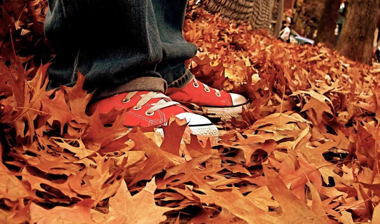 осень, кеды, листья, лист, рельсы, лед,