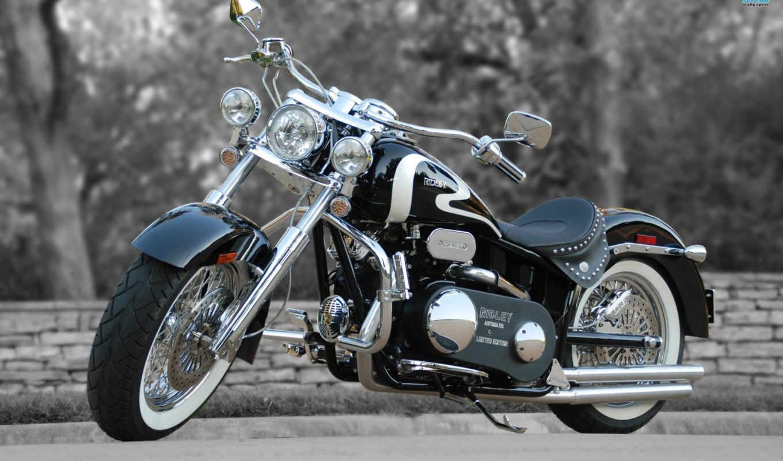 мотоциклы, коллекция,