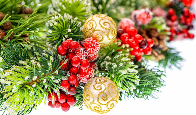 branch, ёль, new, год, ягоды, ветки, есть, christmas, снег, праздники,