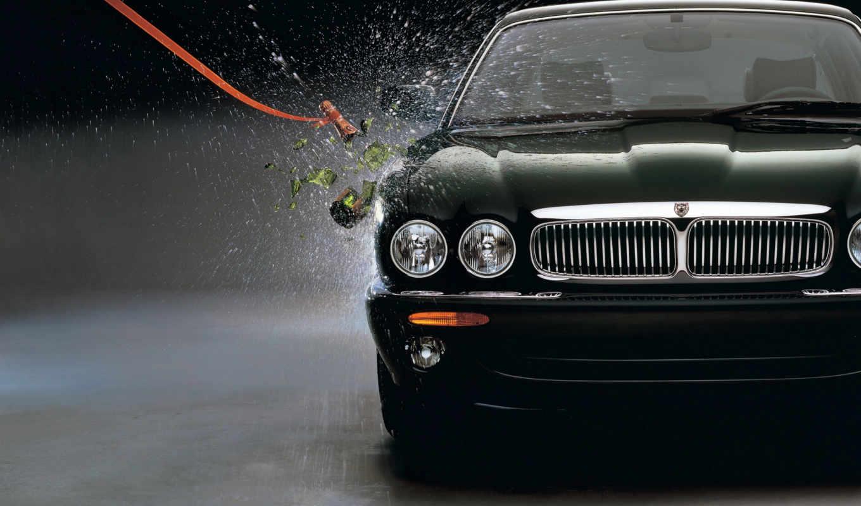 jaguar, красивых, подборка, девушек, download,