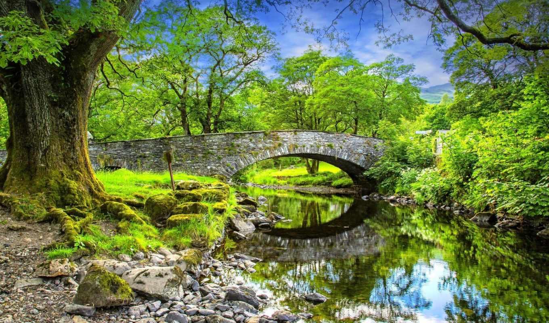 природа, деревья, мост, осень, река, скалы,