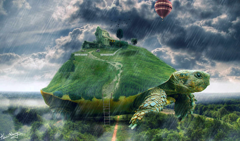 house, черепаха, art, гигантская, дождь, лестница, мяч,