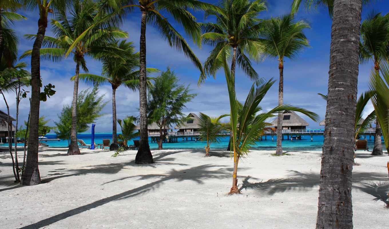 luxury, тропики, maldives, море, resort, пляж,