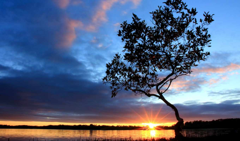 дерево, берег, небо, река, облака, iphone, утро, się, закат, картинка, вечер, diesen, дош, озеро, дезара, пейзажи, цхьаъ, хила,