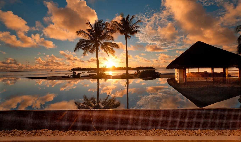 maldives, природа, пальмы, закат, tropics, закаты, oblaka, море, fone,