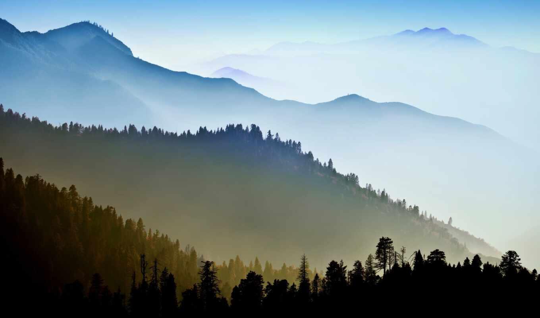 гора, лес, дымчатый