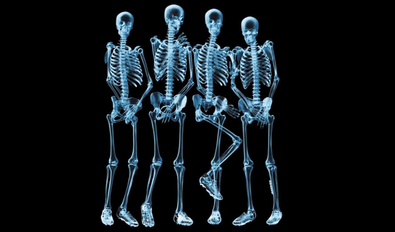 юмор, черный, футбол, картинка, que, rays, дизайн, skeletons, бизнес, нравится, воды, стенка, los, rayos, ура, креатив, city, скелетики, download, platinum, oklahoma,