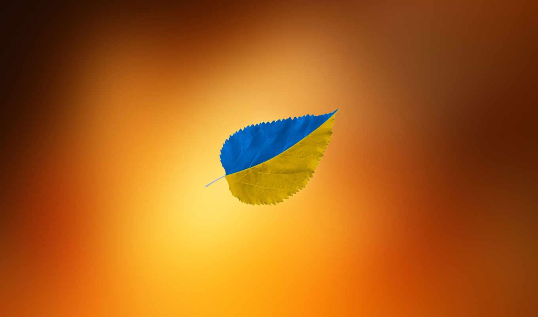 ,листик, оранжевый, желтый, голубой,