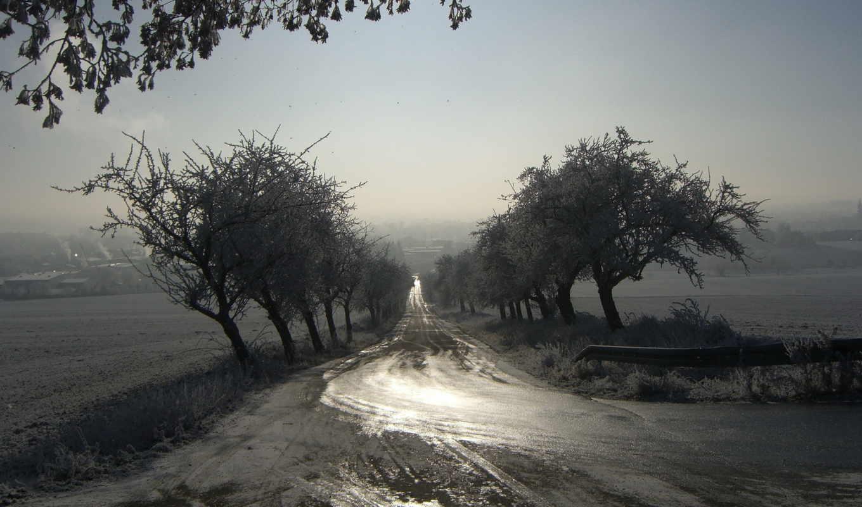 пейзаж, утро, дорога, туман, картинка,