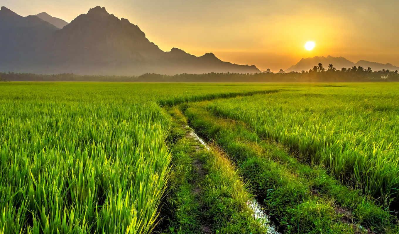 дорога, горы, картинка, природа, поле, sun, утро, рассвет, landscape,