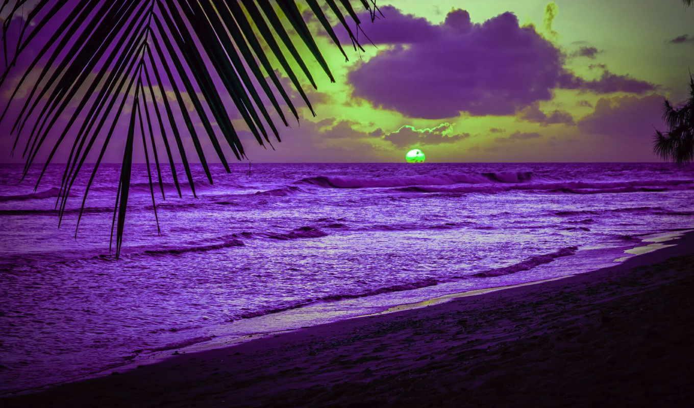 пляж, ecran, fond, мер, fonds, soleil, coucher, plage, caraïbes,