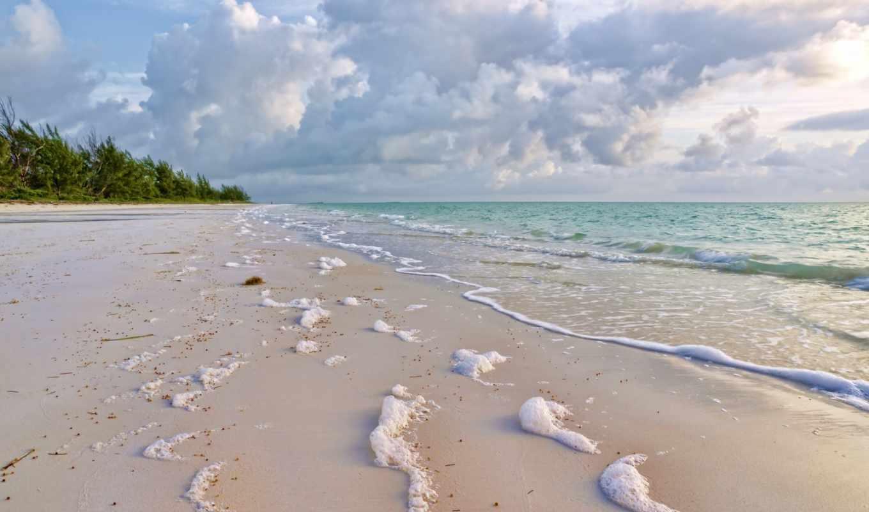 море, побережье, песок, природа, surf, пенка, зелёный,