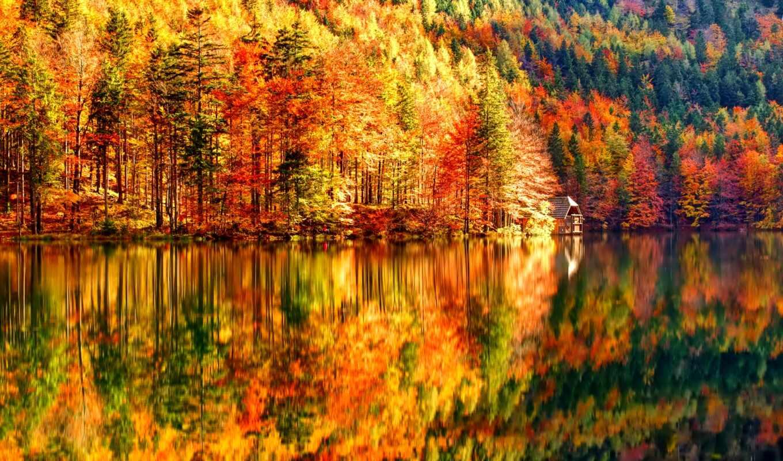 осень, лес, октябрь, озеро, природа, lodge, склон, nice, горы,