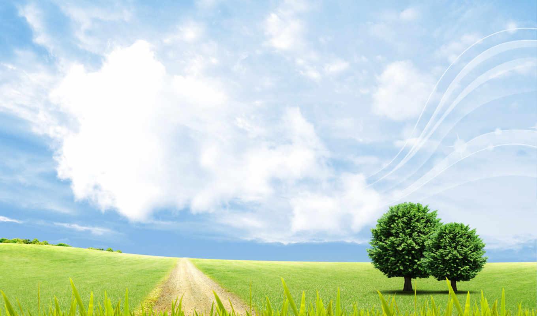 поле, summer, небо, природа, дорога, oblaka, trees, landscape, векторная,