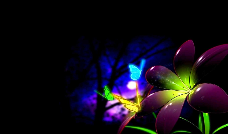 черный, луна, ночь, разноцветные, бабочки, цветок,