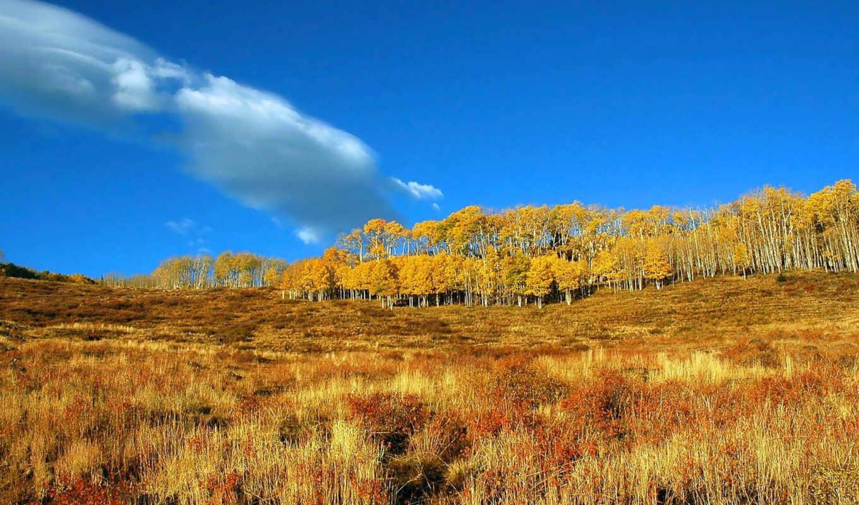 осень, чтобы, природой, картинку, картинка, tapety, за, otoño, размере, просмотреть, обоями, природы, paisajes, её, реальном, jesień, desktop,