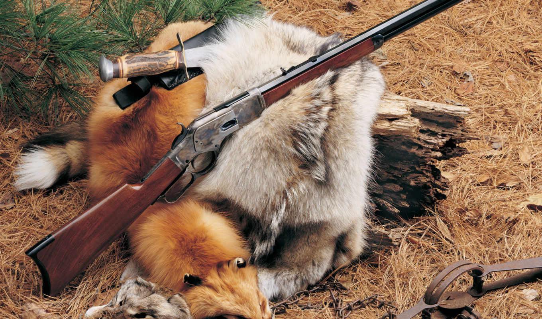 оружие, дикого, запада, дикий,